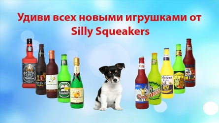 Новинка Silly Squeakers